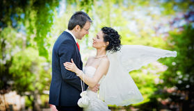 Bride and groom in a park kissing on green backgro Stock Photography