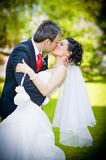 Bride and groom in a park kissing on green backgro Royalty Free Stock Images