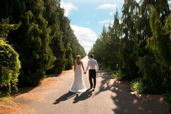 Bride and groom on path. Bride and groom walking on a tree lined path Royalty Free Stock Image