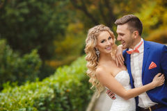 The bride and groom - the photograph in the Park. Stock Image