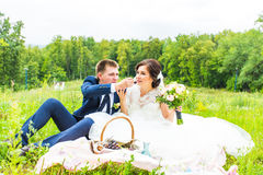 Bride and groom on picnic in a park Royalty Free Stock Image