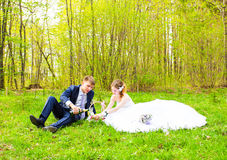 Bride and groom on a picnic Stock Images