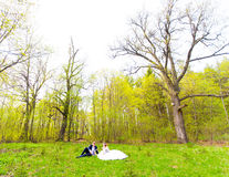 Bride and groom on a picnic Stock Photo