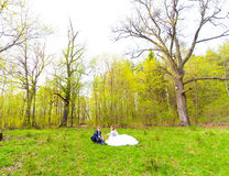 Bride and groom on a picnic Royalty Free Stock Images