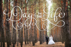 Bride and groom in a pine forest in autumn and text Day in the life. Calligraphy lettering vintage hand draw.  Stock Photo