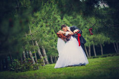 The bride and groom in a pine forest. The groom bowed bride kisses the chest Royalty Free Stock Photography
