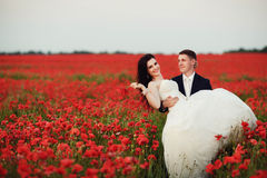 The bride and groom in a poppy field Stock Photography