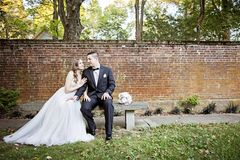Bride and Groom  portrait in garden. A bride and groom sitting on a bench in front of a brick wall in a garden Stock Photo