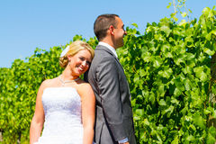Bride and Groom Portraits. A bride and groom pose for portraits on their wedding day at a winery vineyard outdoors in oregon Stock Photography