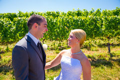Bride and Groom Portraits. A bride and groom pose for portraits on their wedding day at a winery vineyard outdoors in oregon Royalty Free Stock Photography