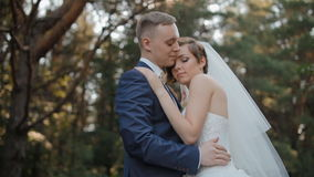 Bride and groom pose in the wood stock video footage