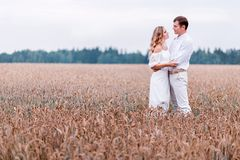 Bride and groom posing against the backdrop of a wheat field stock photos