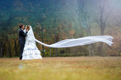 Bride and groom posing in autumn park Royalty Free Stock Images