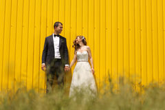 Bride and groom posing near a yellow wall Royalty Free Stock Images