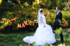 Bride and groom posing in park Royalty Free Stock Photography