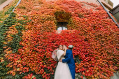 Bride and groom posing in park near fortified castle wall with red creeping plant Royalty Free Stock Image