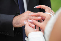 Exchange of rings of the groom and bride Royalty Free Stock Photos