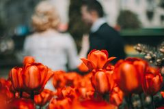Bride and groom. Red flowers and girl and boy in love on blurred background Stock Photo