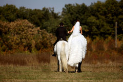Bride and groom riding horses Stock Photo