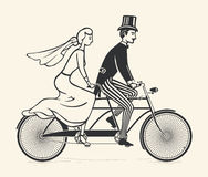 Bride and groom riding a vintage tandem bicycle. Illustration of bride and groom riding a vintage tandem bicycle over white background Royalty Free Stock Image