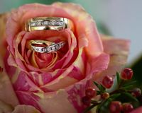 Bride and groom rings on flower with colourful background and foreground Royalty Free Stock Image