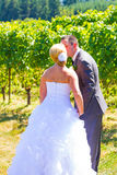 Bride and Groom Romantic Kiss Stock Images