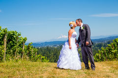 Bride and Groom Romantic Kiss stock photography