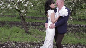 Bride and groom a romantic walk in the apple orchard. On their wedding day stock video footage