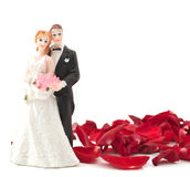 Bride and groom with rose petals Stock Image