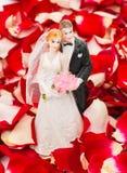 Bride and groom in rose petals Stock Photos