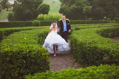 Bride and groom running at garden maze Royalty Free Stock Photography