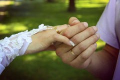 Bride and groom`s hand with golden rings. Close-up Stock Photography