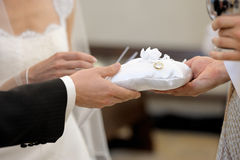 Bride and groom's hands holding wedding rings Royalty Free Stock Photos
