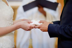 Bride and groom's hands holding wedding rings Stock Photography