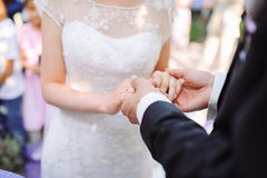 Bride and groom's hands Royalty Free Stock Photography