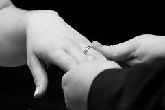 Bride and Groom's Wedding Bands. Groom placing wedding band on bride's hands Stock Image