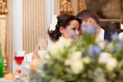 Bride and groom share a special tender moment Royalty Free Stock Images