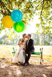 The bride and groom sit on the bench with balloons Stock Photography