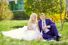 The bride and groom sit on the grass in the park, with glasses i Royalty Free Stock Photo