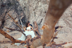 Bride and groom. Sitting on a big tree Royalty Free Stock Photos