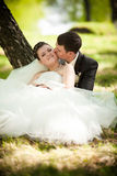 Bride and groom sitting on grass and hugging Stock Photos