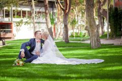 Bride and groom sitting on the green grass Royalty Free Stock Photography