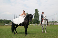 Bride and groom sitting on a horse Royalty Free Stock Images