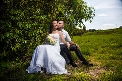 Bride and groom sitting and kissing at park under tree Royalty Free Stock Image