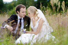 Bride and groom sitting in a meadow Royalty Free Stock Photography