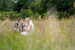 Bride and groom sitting in a meadow Stock Photos