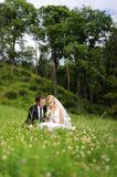 Bride and groom sitting in a meadow Royalty Free Stock Image