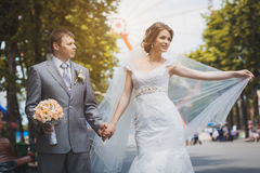 Bride and groom are sitting in the park Stock Image