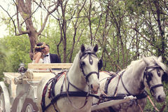 Bride and groom sitting in a white carriage.  Royalty Free Stock Photos