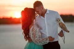 Bride and groom with small owl are standing and huging on background of sunset. Closeup. Bride and groom with small owl in hands are standing and huging in stock photography